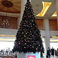 ホテル日航東京のクリスマスツリー